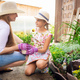 A young woman with a small daughter is planting a plant in a pot - PhotoDune Item for Sale