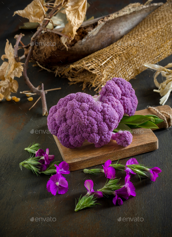 type colored purple violet cabbage on autumnal background - Stock Photo - Images