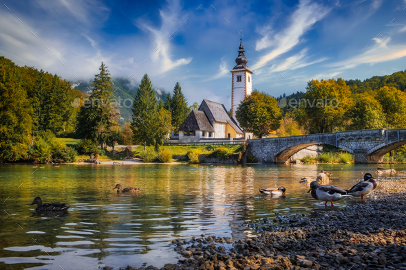 Scenic view of Lake Bohinj church with beautiful colorful foliage, Slovenia - Stock Photo - Images
