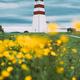Alnesgard, Godoya, Norway. Old Alnes Lighthouse In Summer Day In Godoy Island Near Alesund Town - PhotoDune Item for Sale