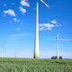 Wind energy generators in a cornfield - PhotoDune Item for Sale