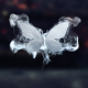 Merging Butterflies Logo Reveal - VideoHive Item for Sale