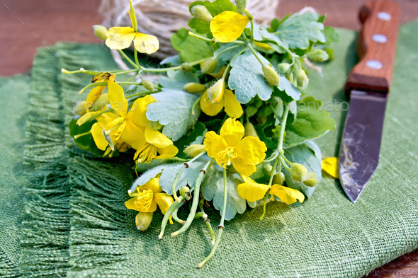 Celandine with knife on board - Stock Photo - Images