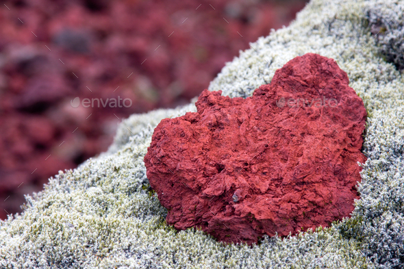 Red Lava And Moss, Iceland - Stock Photo - Images