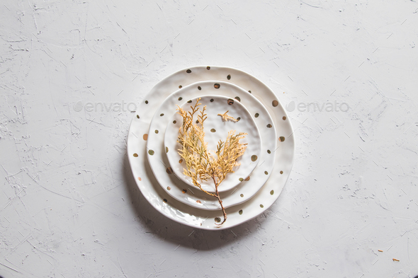 Beautiful plates on a white background with dried plant. Beautiful layout - Stock Photo - Images