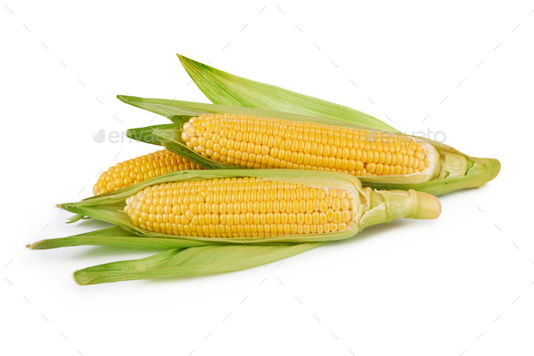fresh corn vegetable with green leaves on white - Stock Photo - Images
