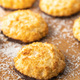 Coconut cookies with chocolate. - PhotoDune Item for Sale