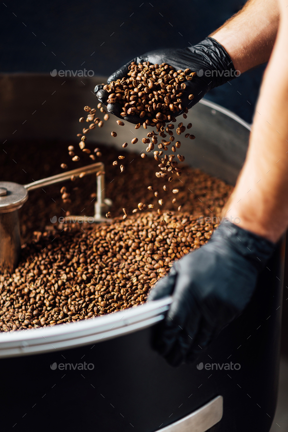 worker took Freshly roasted coffee to check the quality of mixer drum for cooling - Stock Photo - Images