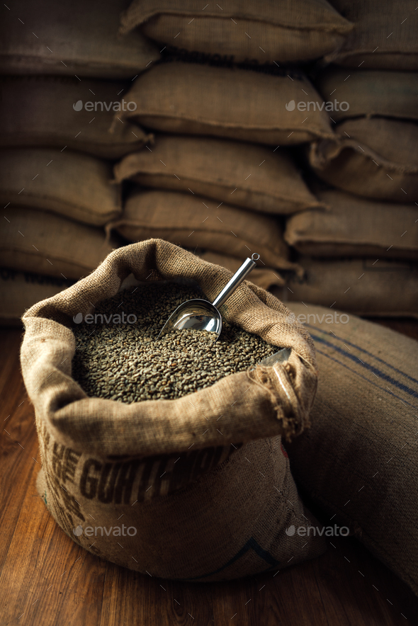 open bag full of raw coffee beans with metal scoop, in the background of the warehouse - Stock Photo - Images