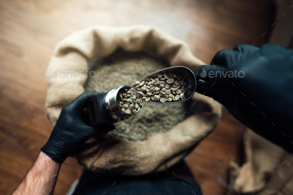 pouring coffee beans into a device for measuring humidity with a metal scoop - Stock Photo - Images
