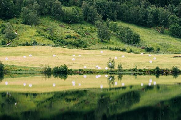 Jolster, Sogn Og Fjordane, Norway. Beautiful Summer Field Landscape With Hay Bales During Harvest - Stock Photo - Images