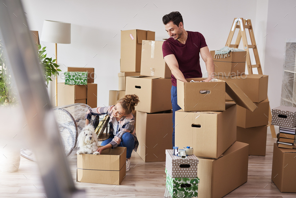 Young couple in new apartment with small dog - Stock Photo - Images