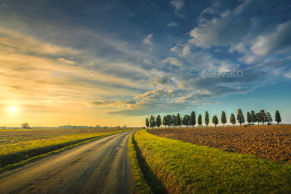 Sunset landscape in Maremma. Rural road and cypress trees. Tuscany, Italy - Stock Photo - Images