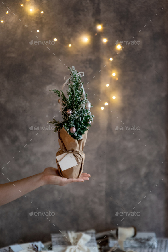Womans hand holding small decorated christmas tree - Stock Photo - Images