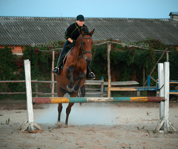 Horsewoman riding on brown horse and jumping the fence in sandy parkour riding arena - Stock Photo - Images