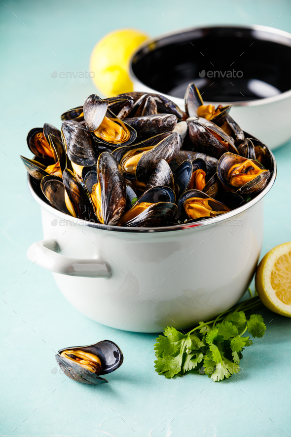 Pot full of steamed mussels on blue background - Stock Photo - Images