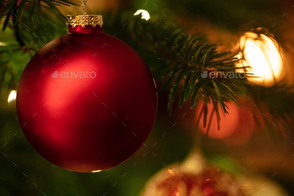 Christmas bauble hanging on a spruce, closeup view - Stock Photo - Images