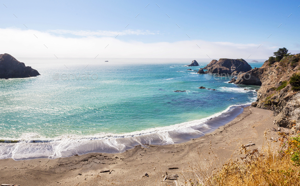 Pacific coast - Stock Photo - Images