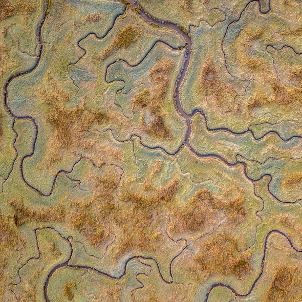 Aerial view of tidal marshland sq - Stock Photo - Images