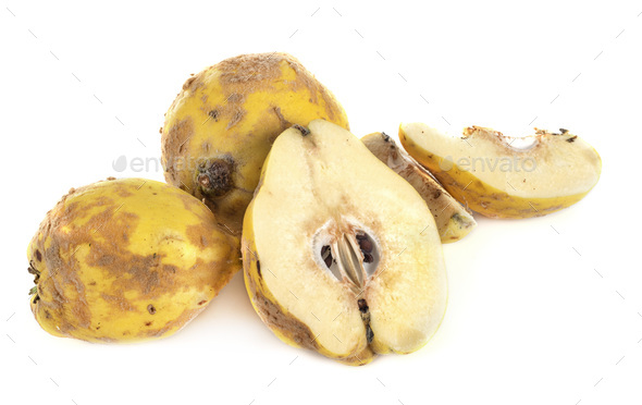 quince in studio - Stock Photo - Images