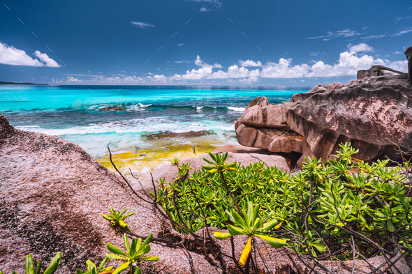 Amazing granite boulders in the jungle of Anse Source d'Argent on La Digue Island, Seychelles - Stock Photo - Images