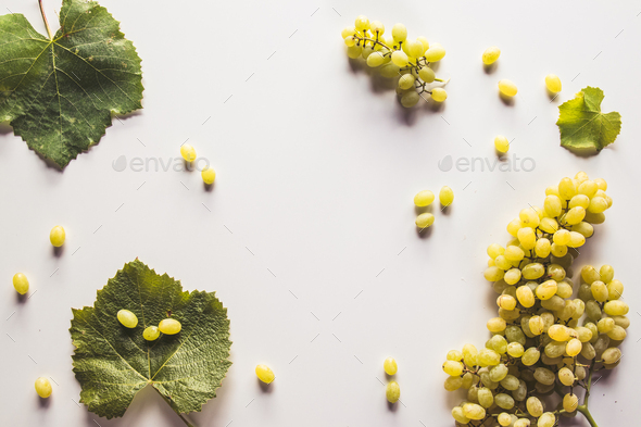 Green grape bunch isolated on white background - Stock Photo - Images