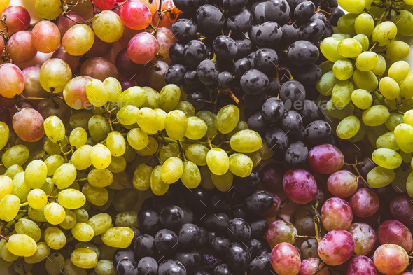 green and red grapes fruits - Stock Photo - Images
