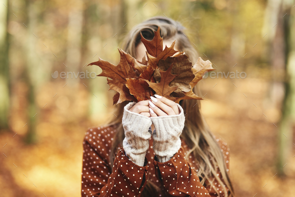 Young woman with autumnal leafs - Stock Photo - Images