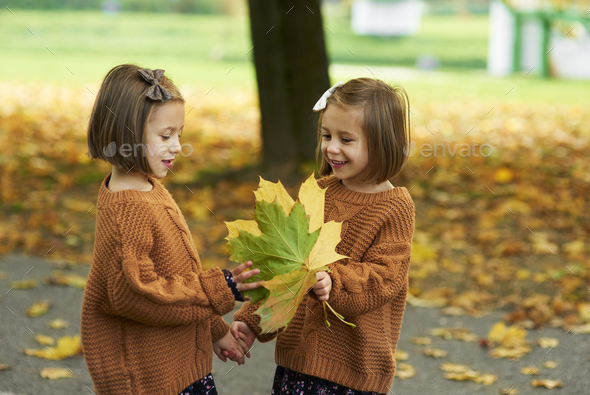 Charming twins picking leafs on the fall season - Stock Photo - Images