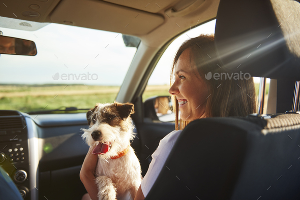 Young woman and her dog traveling together - Stock Photo - Images