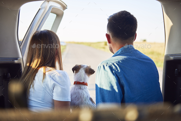 Rear view of young couple and dog enjoying the view - Stock Photo - Images