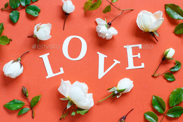 Flowers and word LOVE on a red background - Stock Photo - Images