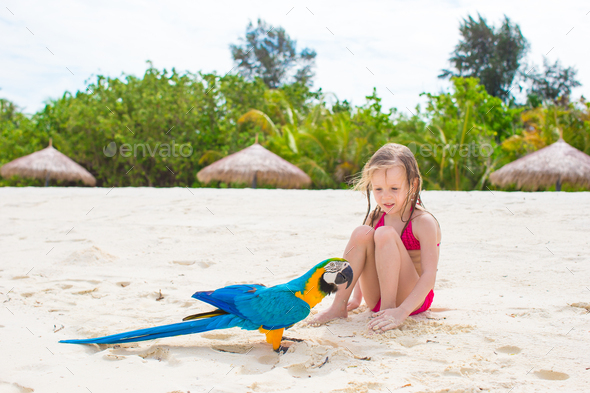 Adorable happy little girl with colorful parrot during beach vacation - Stock Photo - Images