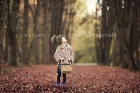 Adorable little girl with a basket in cold autumn day outdoors - Stock Photo - Images