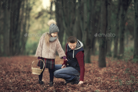 Little adorable girl with dad in autumn park at warm day - Stock Photo - Images