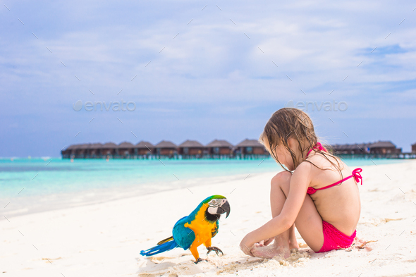 Cute big colorful parrot with adorable little girl on white beach - Stock Photo - Images