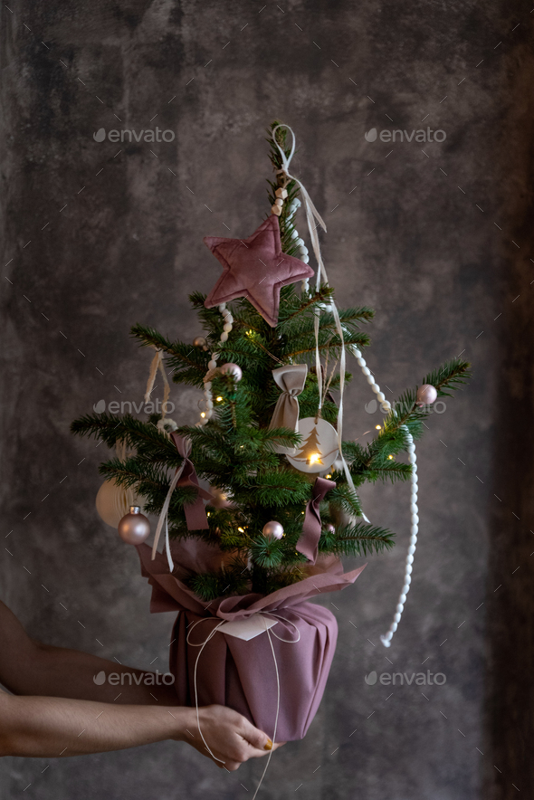 Womans hands holding small decorated christmas tree - Stock Photo - Images