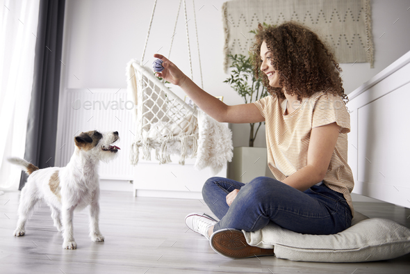 Happy girl playing with her dog at home - Stock Photo - Images