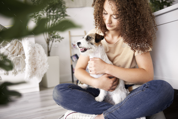 Teenage girl and dog in her room - Stock Photo - Images
