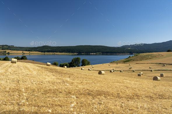 Summer landscape along the road to Camigliatello, Sila. Cecita lake - Stock Photo - Images
