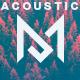 Acoustic Energetic Indie Folk