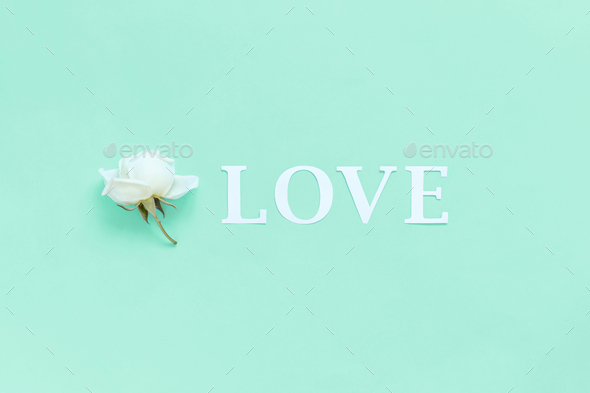 Flower and word LOVE on a light green background - Stock Photo - Images