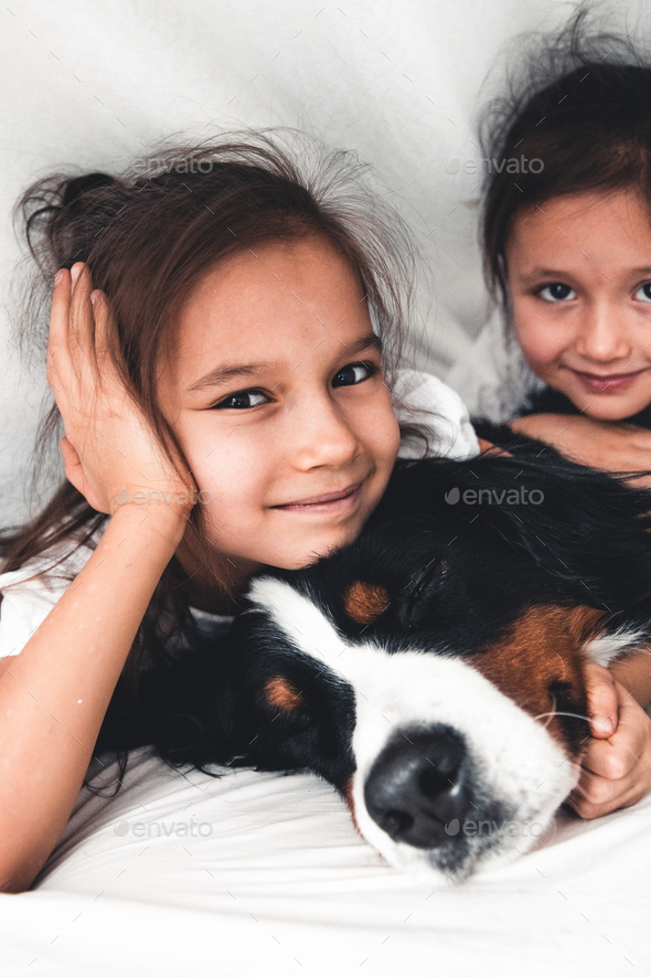 little girls in bed with dog Bernese Mountain Dog, friendship - Stock Photo - Images