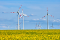 Wind turbines and a flowering canola field - PhotoDune Item for Sale