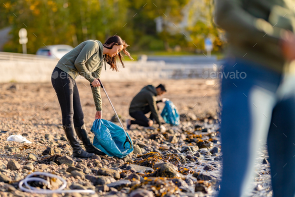 Dedicated volunteers cleaning beach on sunny day - Stock Photo - Images
