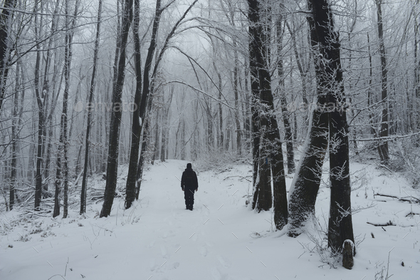 Man on winter path in the woods with snow - Stock Photo - Images