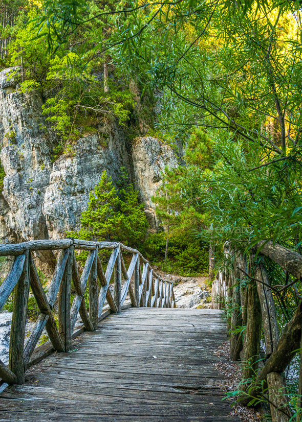 Wooden bridge and stones on the background of green trees - Stock Photo - Images