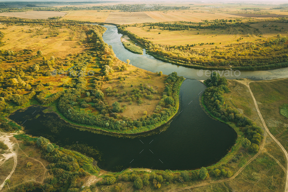 Aerial View Green Forest Woods And River Landscape In Summer Day. - Stock Photo - Images