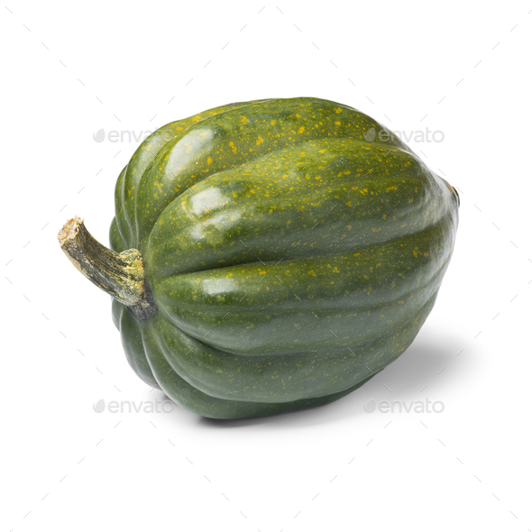 Fresh green acorn squash close up - Stock Photo - Images