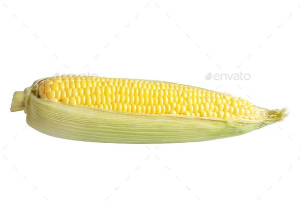 Organic sweet corn cob isolated on white background - Stock Photo - Images